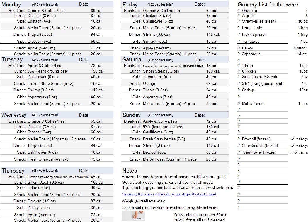 hcg 500 cal diet plan