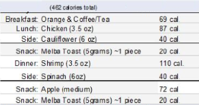 Sample Day of the 500 Calorie Diet menu