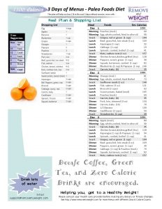 1100 Calorie, 3 day Diet and Menu Plan Paleo Foods