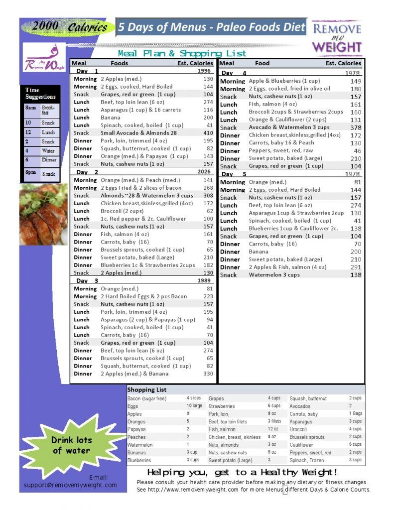 Free 2000 Calories a day 5 Day Paleo Diet with Shoppong ...