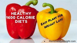1600 Calorie Diet Plans