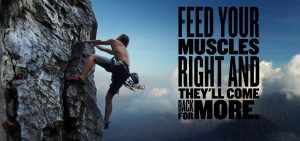 Feed your Muscles Motivation