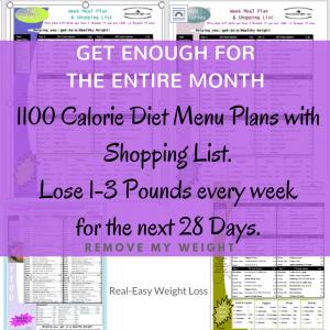 1100 Calorie Diet Menu Plans